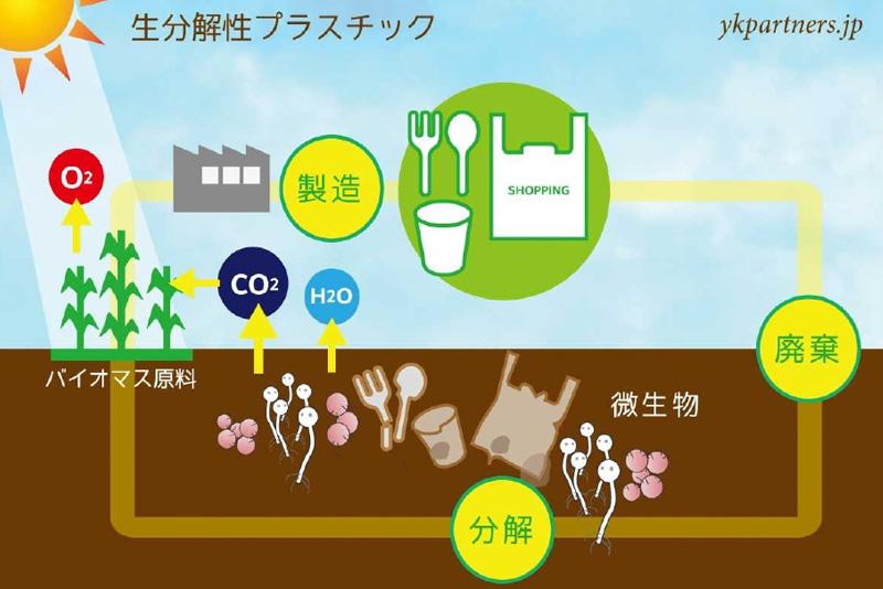 生分解性プラスチックとは何か